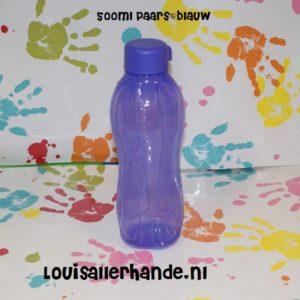 Uitgelezene Eco Flessen Archieven - Louis Allerhande EB-33